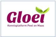 Gloei Peel en Maas